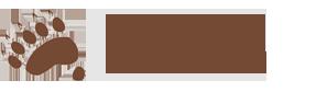 Logo Fundacion Oso Pardo